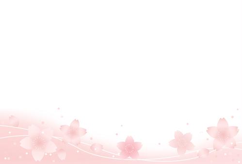 사쿠라 프레임 14