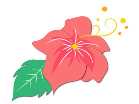 Hibiscus ver 01