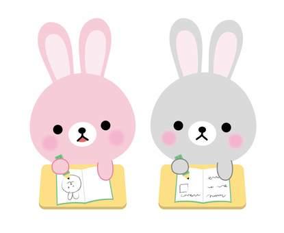 Rabbit study 2