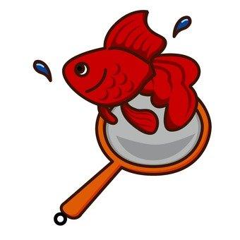 Goldfish scooping