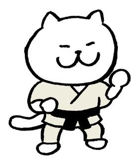고양이 공수