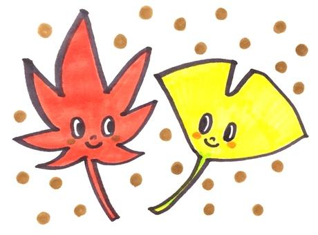 Maple Ginkgo