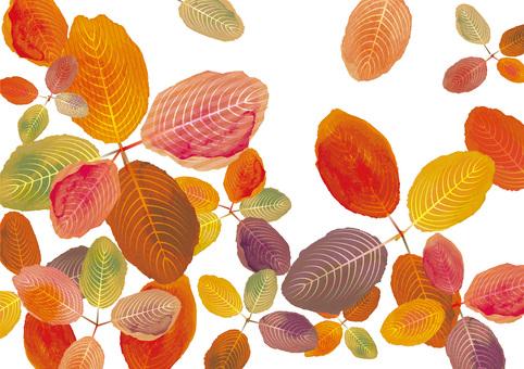 Autumn leaves Fallen leaves Leaf leaf watercolor dead leaf frame
