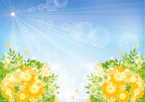 Shining bright sun and flowers 4