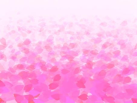 꽃잎 융단