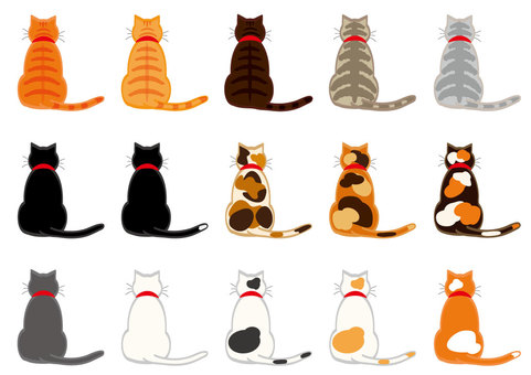Cats (15 rear view set with outline)