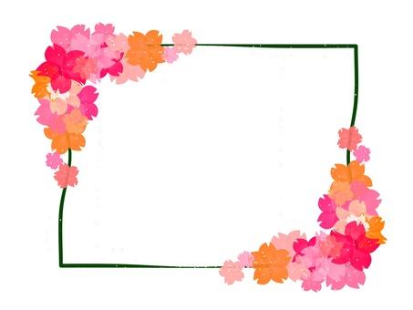 현 벚꽃 4