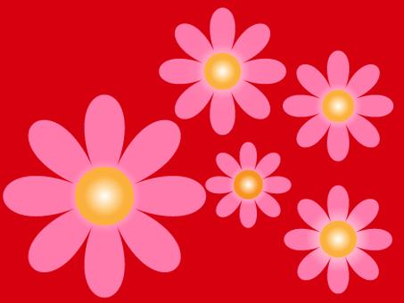粉紅色的花
