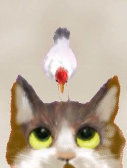 고양이와 작은 새