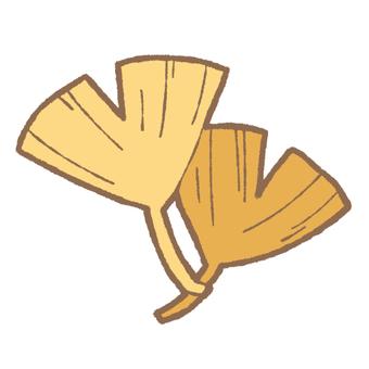 Leaves of ginkgo biloba