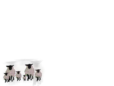 6 sheep