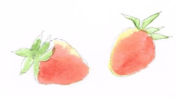 Ichigo watercolor