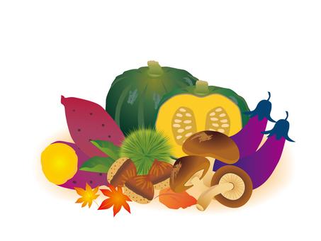 蔬菜各種秋季蔬菜4