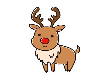Mr. Reindeer reindeer