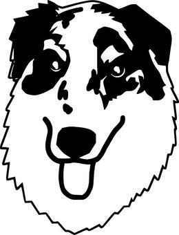 Dog's face 2