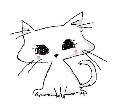 Handwritten white cat