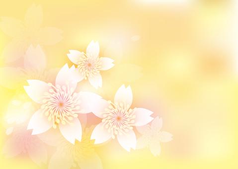 Blooming flowers 148