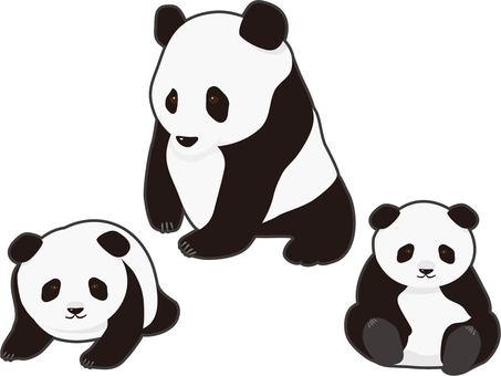 팬더 인연 있습니다