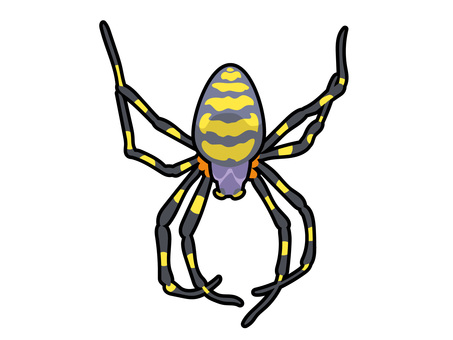 Animal_insect