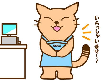 Cash register tea tabby cat