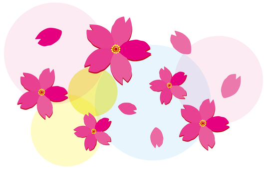 h28 cherry blossoms 12