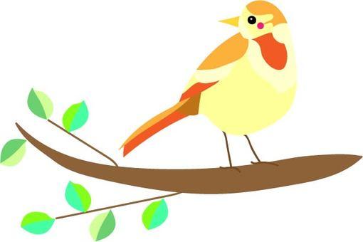 작은 새와 나무