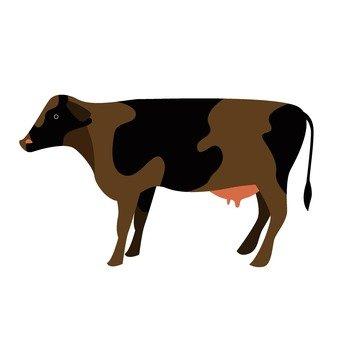 Animal husbandry 073