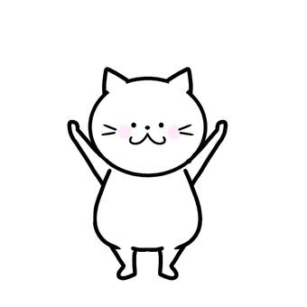 Cat, raise both hands
