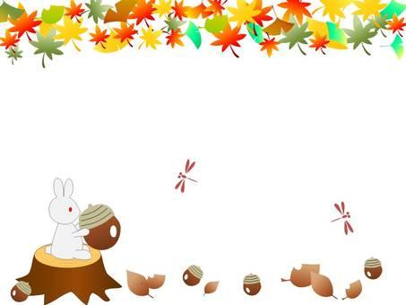 나뭇잎과 토끼