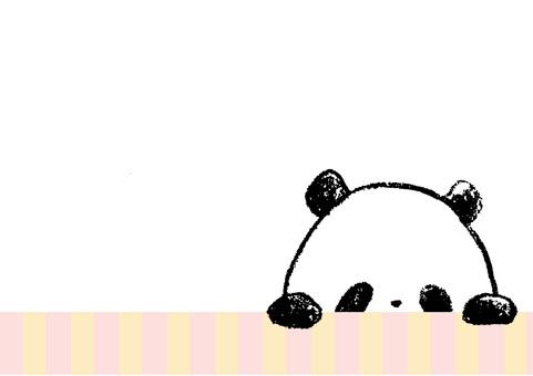 A child panda - she's peeping