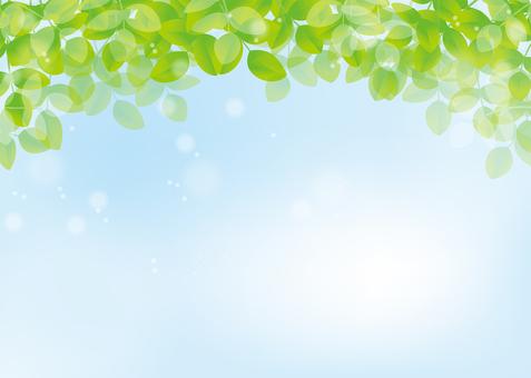 Leaf, background, A4 horizontal, with feet