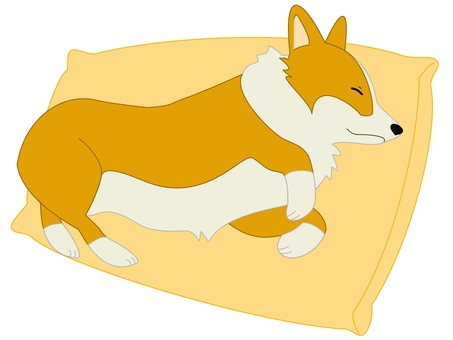 Corgi good yellow
