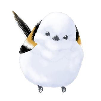 Shimaenaga (small bird) illustration