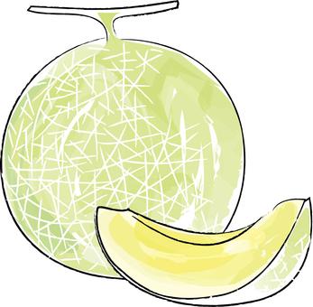 Rough fruit melon