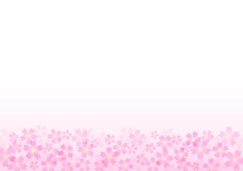 벚꽃 소재 06