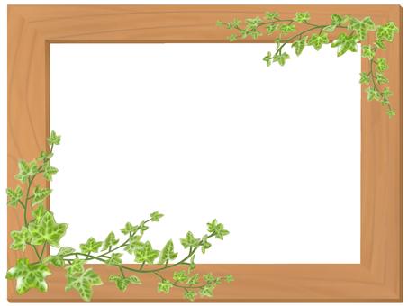木結構和常春藤