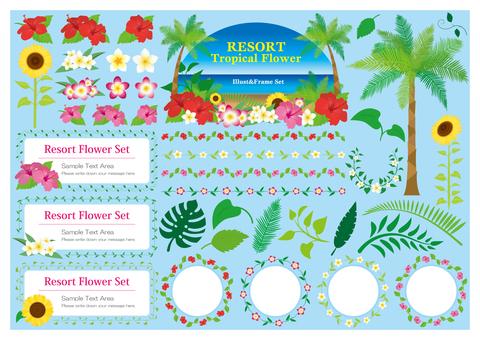 Set of resort flowers