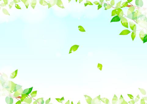 新緑フレーム02