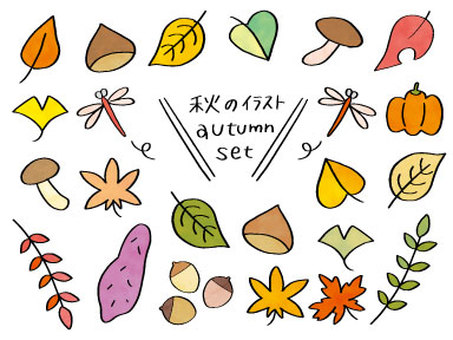 Autumn illustration colorful set