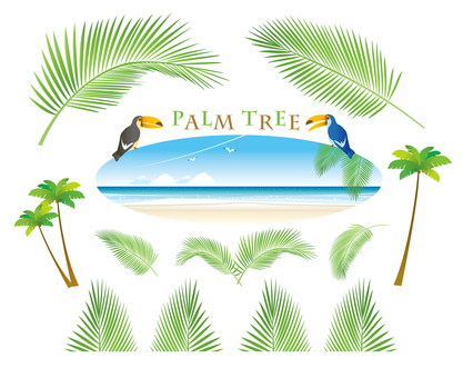 Various sets of palm trees and leaves