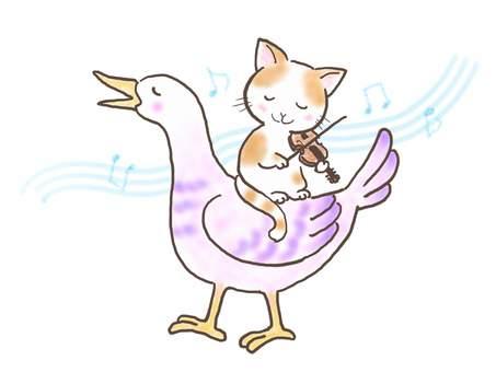 바이올린 고양이 49