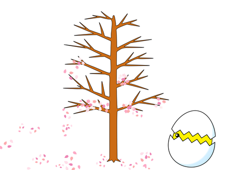 I look at the falling cherry blossoms