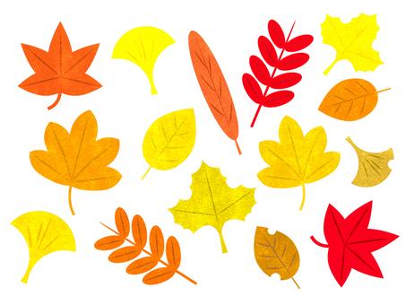 Set of stamp wind-leaves