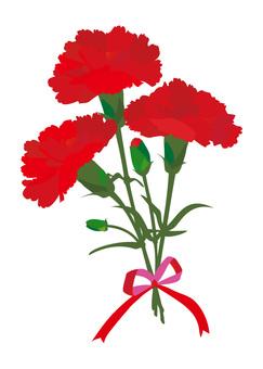Red Carnation (v 10)