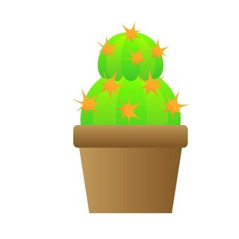 Houseplant - Ball Cactus (2 Tiers)
