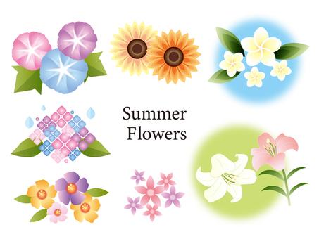 Summer flower set