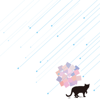 Cat and rain and hydrangea