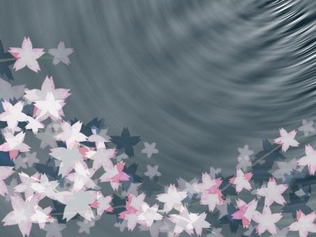 夜桜の壁紙
