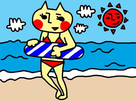 Swimsuit cat sea