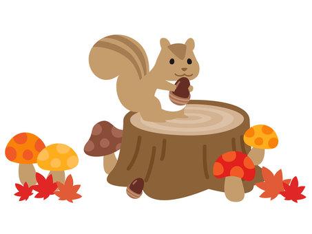 Stump and squirrel